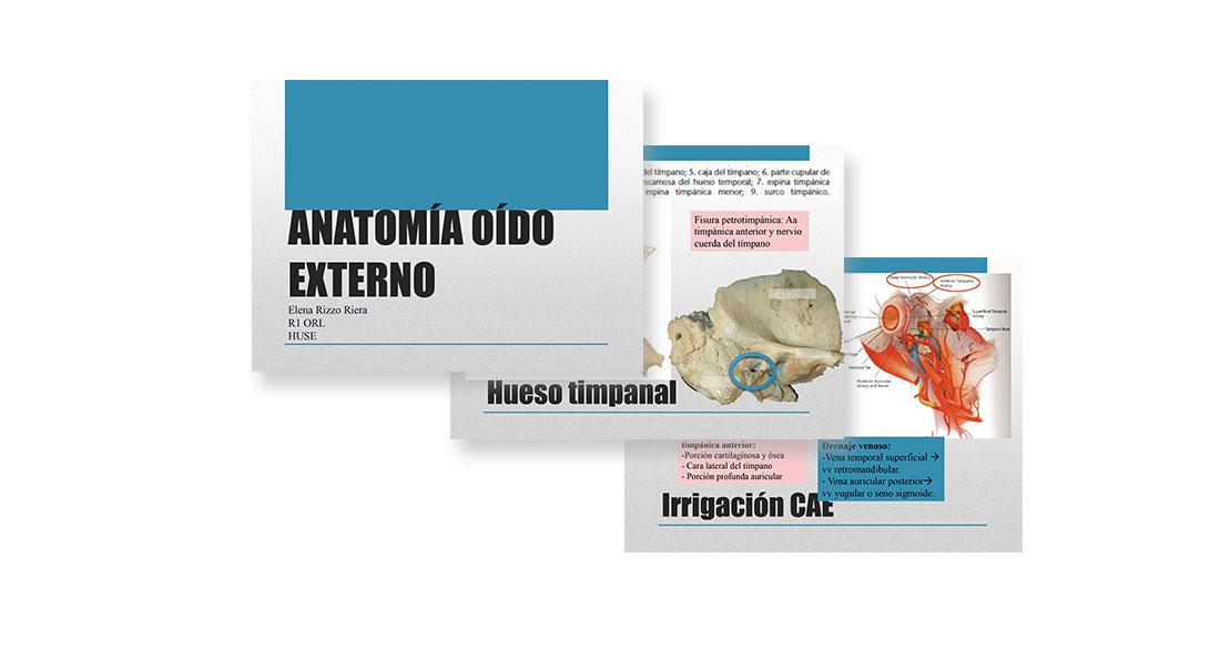 Anatomia Oido Externo | SBORL | Sociedad Balear de Otorrinolaringología