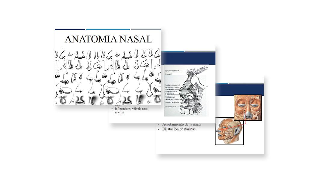 Anatomia Nasal | Miguel Garcia Wagner | SBORL ORL